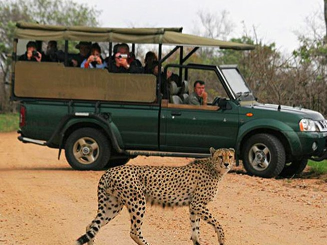 Kruger National Park - Full day Safari(8 - 10 hours Off site)