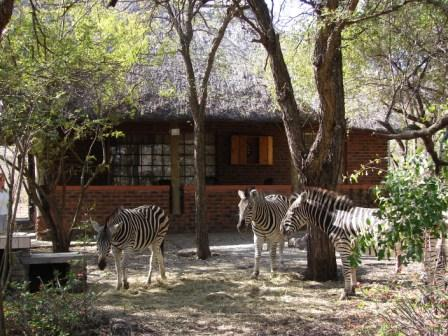 Marloth Park Home Page